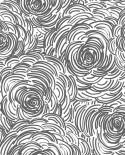 Papier peint Lutèce Eclipse Celestial Noir fond blanc FD23833