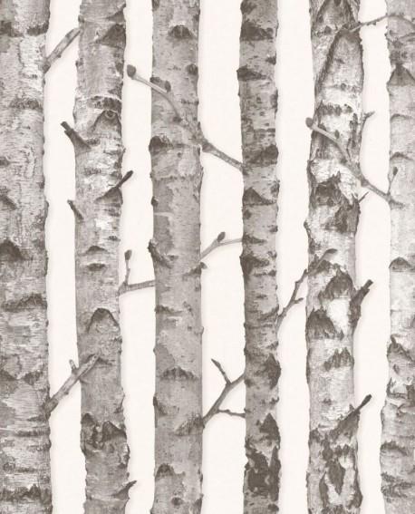 Papier peint Rasch Greenhouse Troncs de boulot gris 138889