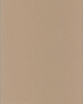 Papier peint Casadeco Toile de Jouy Fontainebleau Uni Beige FONT22901301