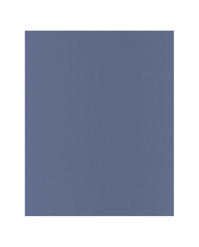 papier peint intiss toile de jouy uni. Black Bedroom Furniture Sets. Home Design Ideas