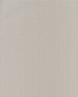 Papier peint Casadeco My Little World Pois Beige MLW29791118