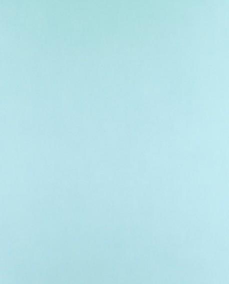 Papier peint Casadeco Alice & Paul Uni bleu AEP16086101