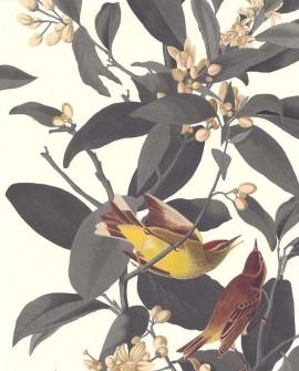 Papier peint Lutece Rétro Vintage Branches et oiseau Gris 51175509