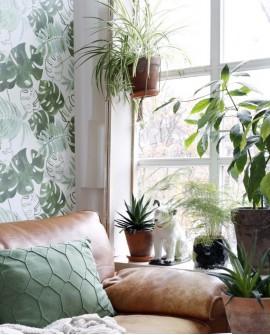 Papier peint Rasch Greenhouse Feuilles tropicales Vert olive grisé 138888