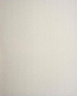 Papier peint Casadeco Toile de Jouy Fontainebleau Uni Gris FONT22909103