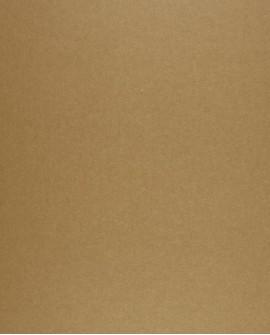 Papier peint Casadeco Toile de Jouy Fontainebleau Uni Beige doré FONT23002124