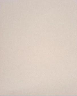 Papier peint Casadeco Toile de Jouy Fontainebleau Uni Gris FONT59559006