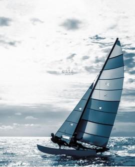 Papier peint XXL Esta Home Regatta Crew Catamaran Bleu 158846