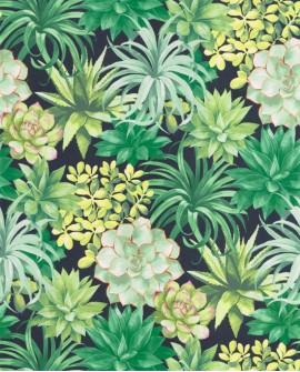 Papier peint tropical Botanica Casadeco Echeveria Vert jungle BOTA85917396