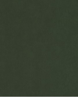 Papier peint uni Caselio Sea You Soon Vert Kaki SYO64527370