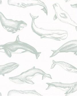 Papier peint Caselio Sea You Soon Whale Done Vert d'eau SYO102797010