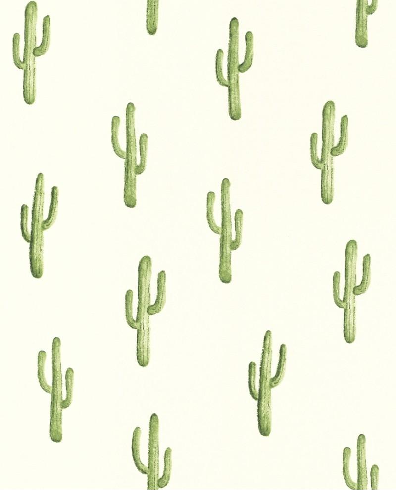 Papier Peint Greenhouse Cactus Vert Jungle 138899