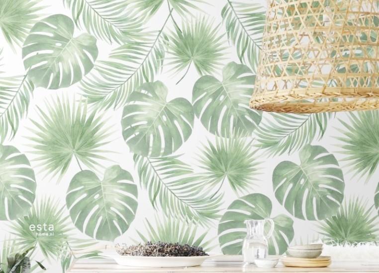 Découvrez nos papiers peints motif tropical pour une ambiance jungle